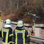 Feuerwehren mussten Waldbrand zwischen Arenshausen und Uder bekämpfen
