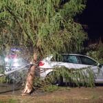 Sturmtief Elon und Felix sorgen für zahlreiche Einsätze der Feuerwehren