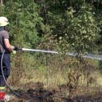 Flächenbrand bei Bad Berka drohte erneut auf Wald überzugreifen