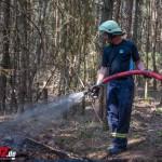 Nadelholzwald brannte zwischen Blankenhain und Tannroda