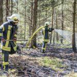 Waldbrand auf einer Fläche von 1800 Quadratmetern bei Blankenhain