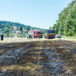 Glasflasche löste Flächenbrand bei Bergern aus