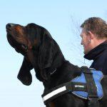 Personenspürhund Burnie findet vermissten Jungen in Mühlhausen