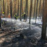 Dritter Waldbrand diese Woche bei Tannroda hält Feuerwehren auf Trab