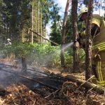 Unterholz brannte zwischen Tannroda und Kranichfeld