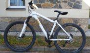 Polizei sucht nach Diebstahl den Eigentümer von diesem Mountainbike