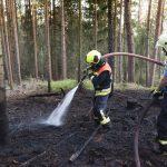 Erneut ausgedehnter Waldbrand zwischen Tannroda und Kranichfeld