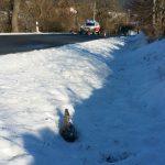 Munitionsbergedienst barg gefundene Granate im Schnee bei Bad Berka