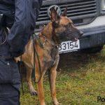 Diensthundestaffel Westthüringen bereitet sich auf Besuch der niederländischen Königsfamilie vor