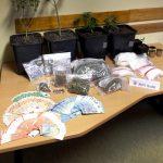 Drogendealer aus Wartburgkreis in JVA Suhl-Goldlauter inhaftiert