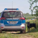 Dobermann in Maschendraht verfangen - Besitzer wollte ihn befreien
