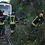 Umgestürzte Bäume auf Bahn-Strecke bei Hildburghausen