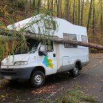 Baum stürzt bei Eisenach auf fahrendes Wohnmobil