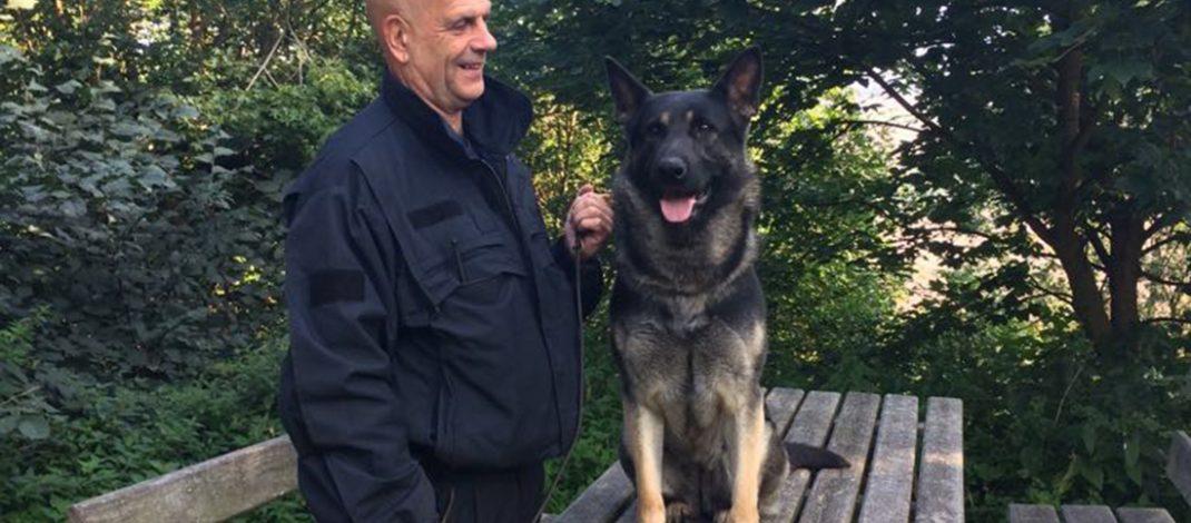 Erfolgreiche Suche mit Fährtenhund nach vermissten Rentner