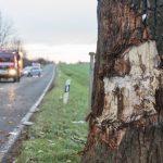 Gegen Baum geprallt: 19-Jähriger stirbt bei Unfall im Wartburgkreis