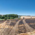 Größter Feldbrand seit Jahrzehnten bei Zottelstedt