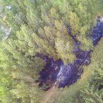Waldbrand im Landkreis Hildburghausen drohte sich weiter auszubreiten