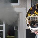 Kellerbrand in Mehrfamilienhaus: Feuerwehr rettet Bewohner und vier Katzen