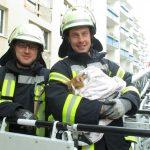 In Fenster eingeklemmt: Berufsfeuerwehr rettet Katze mit Drehleiter in Eisenach