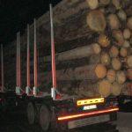 Holzlaster auf A9 bei Eisenberg mit 22 Tonnen zu viel aus dem Verkehr gezogen