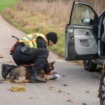Großaufgebot an Feuerwehr und Polizei sucht vermisste Person an der Ilm nahe Mellingen