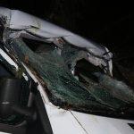 Ford Transit kracht bei Schleiz in umgestürzten Baum auf der Straße