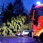 "Sturm ""Dragi"" entwurzelt 25 Meter hohe Tanne in Heiligenstadt"