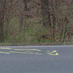 Beim Überholen: Motorradfahrerin verliert bei Jena die Kontrolle und fährt gegen Baum