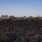 13 Feuerwehren löschen großen Feldbrand im Landkreis Gotha