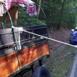 89-Jähriger fährt ungebremst in Pferdekutsche bei Altenburg - Vier Personen verletzt