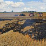 Traktor riss Strommast um: Feld brennt bei Otterstedt im Kyffhäuserkreis