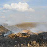 25 Strohballen brannten bei Weida - Polizei sucht Hinweise zur Ursache