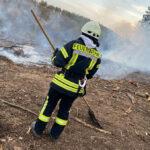 Waldbrand auf steilem Berg bei Niederorschel: Equipment zum Grillen hat Feuer ausgelöst