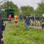 20 Kühe in Großrudestedt ausgebüxt: Ausflug auf A71 und Bahngleise bei Erfurt