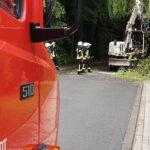 Gefahr durch abgebrochene Weide: Feuerwehr in Bernterode im Einsatz