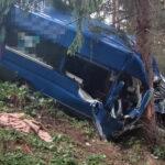 Großraumtaxi prallt im Ilm-Kreis gegen Baum: Vier Insassen schwer verletzt